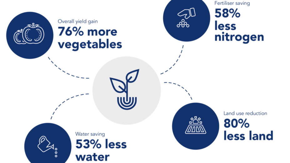 Grodan infographic. Sustainability report 2017